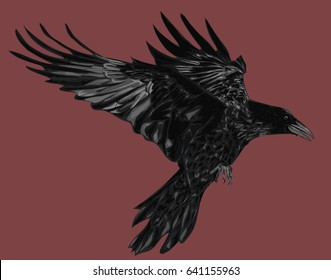 Vector Raven on Red