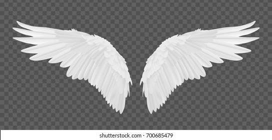 angel wings photo editor app