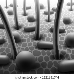 Vector realistic black and white illustration of spherical and rod-shaped bacteria on skin with hairs, close up microflora under microscope