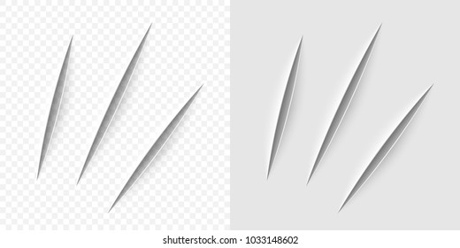Vector realistic cut with a office knife on paper sheet isolated. Claws animal scratches on transparent background.