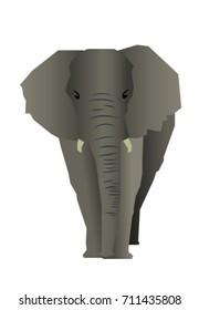 vector realistic elephant