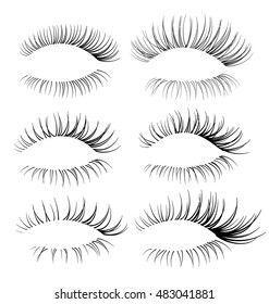 Vector realistic eyelash textures. Set of beautiful lash brush for your design