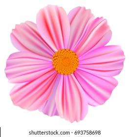 Vector realistic flower
