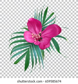 Vector realistic flower and palm leaves on a transparent background. Exotic floral. Trendy colorful design.  Blooming Bouquet.