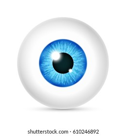 Vector realistic human eyeball. Eye with bright blue, illustration of eye ball isolated on white background
