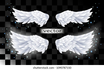 Vector realistic illustration of angel wings white shining with sparkling stars isolated on transparent background.