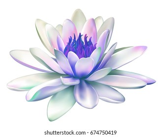 Vector realistic illustration of blue purple lotus flower isolated on white background. Design for natural cosmetics, health care and Ayurveda products, yoga center.