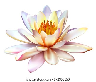 Vector realistic illustration of lotus flower isolated on white background. Design for natural cosmetics, health care and ayurveda products, yoga center.