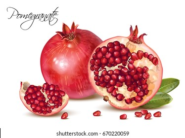 Vector realistic illustration of pomegranate fruits group isolated on white background. Design element for cosmetics, spa, pomegranate juice, health care products, perfume.