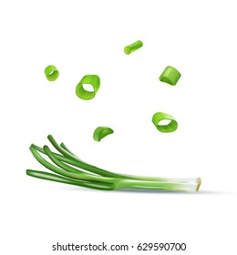 Vector realistic illustration of spring onion. Colorful greens.