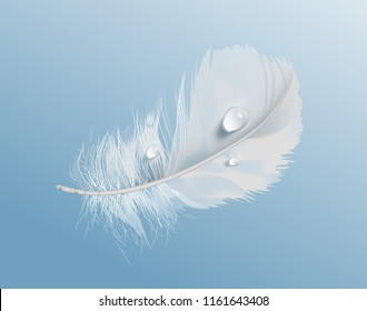 Vector realistic illustration of white airy soft bird feather with water drops isolated on blue background