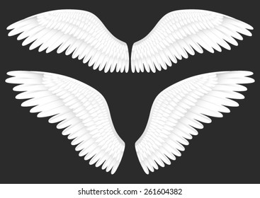 Vector realistic illustration of white angel wings 0
