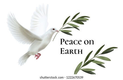 Vector realistic illustration of white dove of peace flying with green olive twig isolated on white background with space for text
