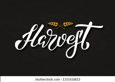 Vector realistic isolated typography logo for Harvest with origami wheat for decoration and covering on the dark background. Concept of happy harvest season and festival.