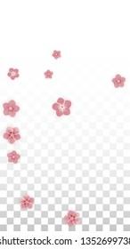 Vector Realistic Pink Flowers Falling on Transparent Background.  Spring Romantic Flowers Illustration. Flying Petals. Sakura Spa Design. Blossom Confetti. Design Elements for  Wedding Decoration.
