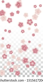 Vector Realistic Pink Flowers Falling on Transparent Background.  Spring Romantic Flowers Illustration. Flying Petals. Sakura Spa Design. Blossom Confetti. Design Elements for  Mother's Day.