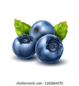 Vector realistic raw blueberry with green leaves. Ripe fruits full of nutritions and vitamins, juicy fresh cooking ingredient. Vector 3d healthy natural food, organic agriculture symbol