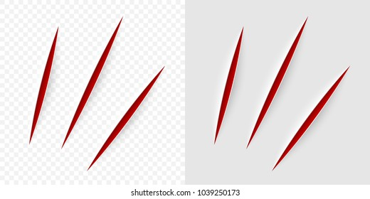 Vector realistic red cut with a office knife on paper sheet isolated. Claws animal scratches on transparent background.
