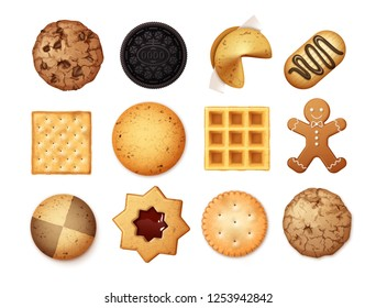 Vector realistic set of different chocolate and biscuit chip cookies, gingerbread and waffle, top view isolated on white background