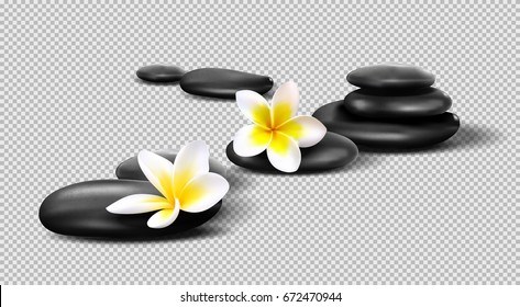 Vector realistic stones on transparent background. Pebbles with Plumeria flowers. Template for Spa salon, cosmetic, massage advertising