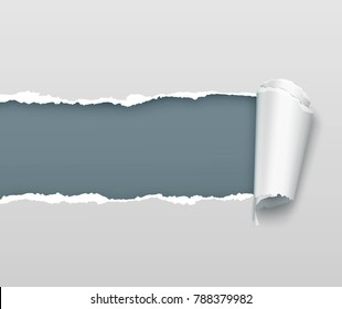Vector realistic torn and twisted paper strip on light gray background