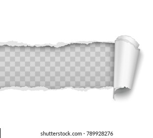 Vector realistic torn and twisted paper strip on white background