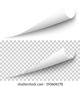 Vector realistic white paper corner with shadow on transparent background. 3D page corner curled. Blank sheet of paper. Design element