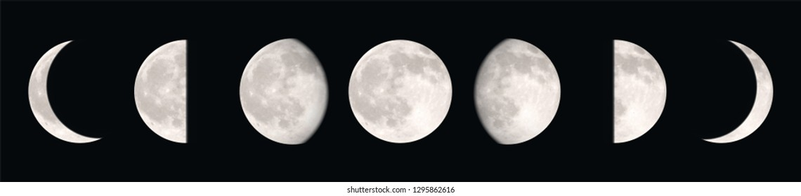 Vector realstic illustration of different moon phases