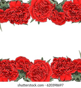 Vector Red Carnations Frame