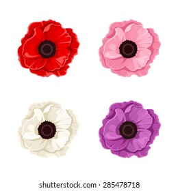 Vector red, pink, white and purple poppies isolated on a white background.