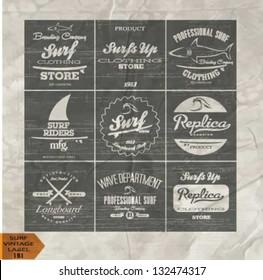 vector retro surf label set.