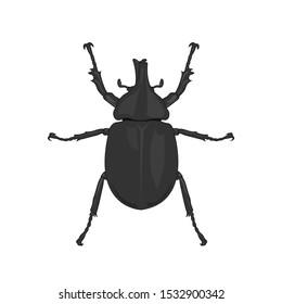Vector, Rhinoceros beetle, Hercules beetle, Unicorn beetle, horn beetle, male on white background