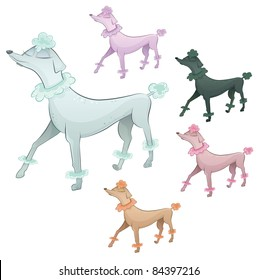 Vector ridged poodle dog cartoon character. Collection in five different colors.