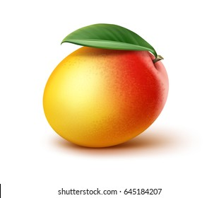 Vector ripe yellow, orange, red mango with leaf isolated on white background