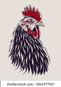 Vector Rooster Illustration. Engraving style cock.