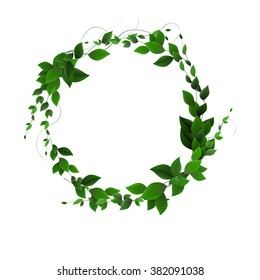 vector. Round banner of branches with leaves. Green leaves in a circle. vector leaves and place for text