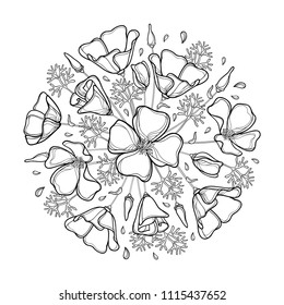 Vector round bouquet of outline California poppy flower or California sunlight or Eschscholzia, leaf and bud in black isolated on white. Contour ornate poppy for summer design or coloring book.