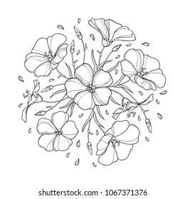 Vector round bouquet with outline Flax plant or Linseed or Linum. Flower bunch, bud and leaf in black isolated on white background. Ornate Flax in contour style for summer design and coloring book.