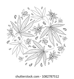 Vector round bunch of outline Cannabis sativa or Cannabis indica or Marijuana. Leaf, flower and seed in black isolated on white background. Contour medicinal plant for summer design or coloring book.