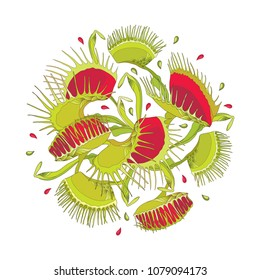 Vector round composition of Venus Flytrap or Dionaea muscipula in red and green isolated on white background. Carnivorous exotic tropical plant Venus flytrap in contour for botany design.