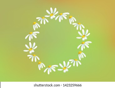 Vector round frame of chamomiles in the colorful background. Floral design element.