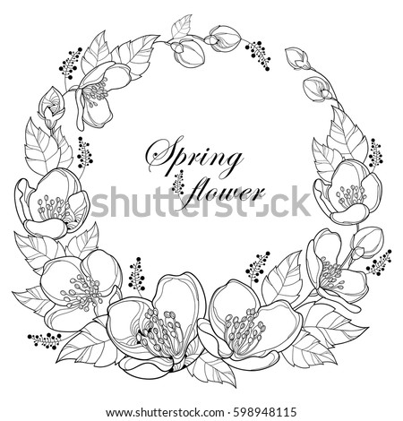 Vector Round Wreath With Outline Jasmine Flowers Bud And Leaves Isolated On White Background