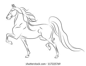 Vector running American Saddlebred horse sketch