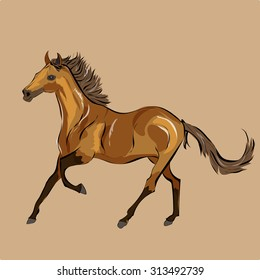 Vector of a running horse.  It may be used for design of a t-shirt, bag, postcard, a poster and so on.
