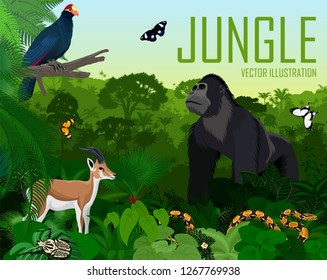 Vector Rwanda jungle rainforest with Ross's turaco, gazelle impala, python, male gorilla and butterflies