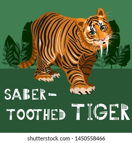 Vector Saber-toothed tiger on green backgtound poster, vector card, cute hand drawn poster with Saber-toothed tiger, vector illustration Saber-toothed tiger for kids, print