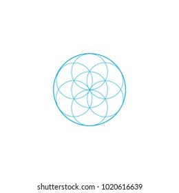 Vector sacred geometry illustration: Flower of Life, also known as seed of life or The Pattern of Creation.