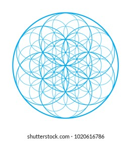 Vector sacred geometry illustration: Flower of Life, also known as Seed of Life or The Pattern of Creation. Flower of Life symbol represents patterns of life as they emerge from the great void.