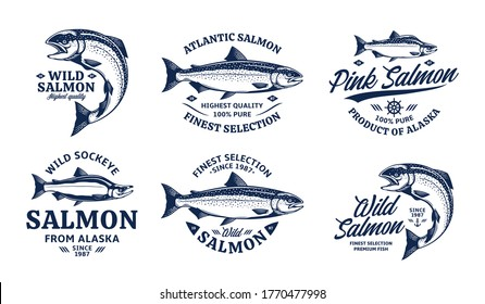Vector salmon logo on a white background. Atlantic, chinook, sockeye, and pink salmon fish illustrations. Seafood labels design