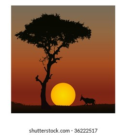 Vector of a scene of sunset in Africa